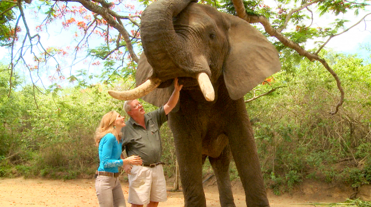 New-Elephant-Whisperer-Pic